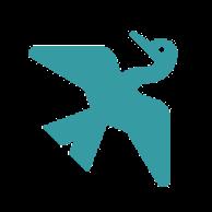 Anonymer Kormoran (cormorant) von Google Drive