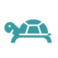 Anonyme Schildkröte von Google Drive