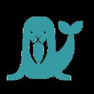 Anonymes Walross (walrus) von Google Drive