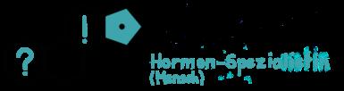 Dr. med. vet. Julia Naudszus - Hormonspezialistin (Mensch) - ARTgerechte Hormonbalance