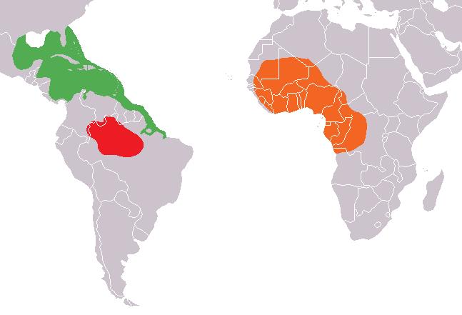 Verbreitungsgebiet der Rundschwanzseekühe