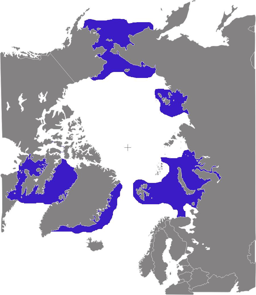 Verbreitungsgebiet der Walrosse