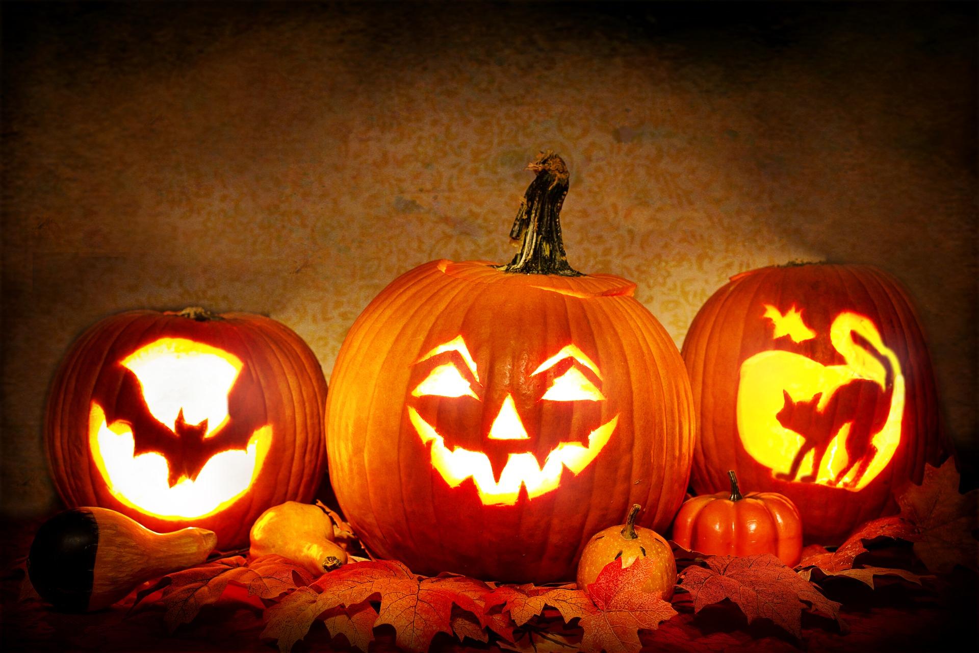 Kürbis - pumpkin (Halloween)